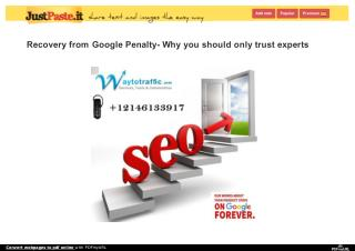 Recovery from Google Penalty- Why you should only trust experts
