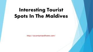 Interesting Tourist Spots In The Maldives
