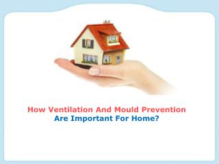 How Ventilation And Mould Prevention Are Important For Home