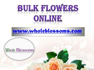 Bulk Flowers Online - Wholesale Flowers