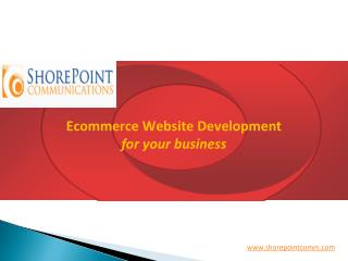 One of the best Really Good Ecommerce Website Development Company IN new York