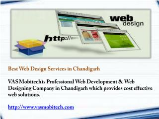 Professional Web Designing Company in Chandigarh