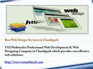 Professional Web Designing Company in Chandigarh
