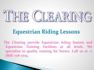 Equestrian Riding Lessons