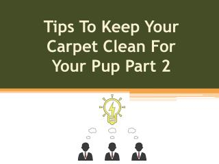 Tips To Keep Your Carpet Clean For Your Pup Part 2