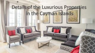 Details of the Luxurious Properties  in the Cayman Islands