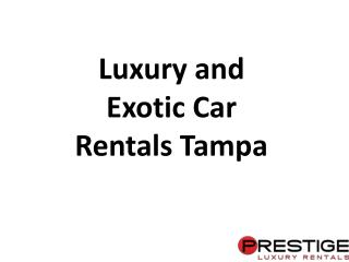 Exotic Cars for Rentals in Tampa