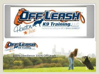 Dog Obedience Trainer Houston Texas | Dog Training Houston TX | Dog Board and Train Houston | Off Leash K9 Training Hous