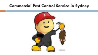 Commercial Pest Control Service in Sydney