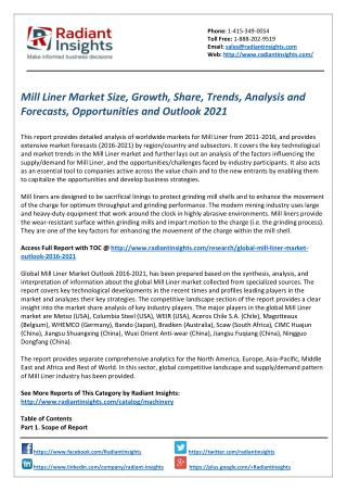 Mill Liner Market Size, Share, Trends and Outlook by Radiant Insights