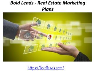 Bold Leads - Real Estate Marketing Plans