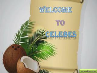 Celebes – Organic RDB Refined Coconut Oil Seller