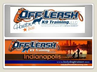 Indy Dog Trainers | Dog Training Indianapolis | Dog Obedience Trainer Indianapolis Indiana