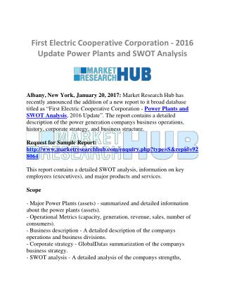 Power Plants and SWOT Analysis Market Research Report