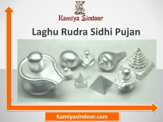 Laghu Rudra Sidhi Pujan & Laghu Rudra Puja Vidhi at Maha Shivaratri