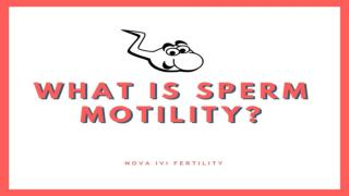 What is Sperm Motility?