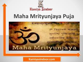 Maha Mrityunjaya Puja & Maha Mrityunjaya Puja at Maha Shivaratri