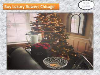 Buy Luxury flowers Chicago