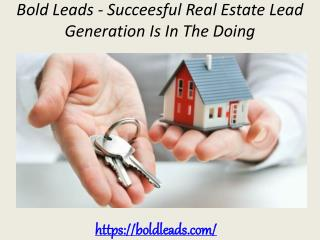 Bold Leads - Succeesful Real Estate Lead Generation Is In The Doing