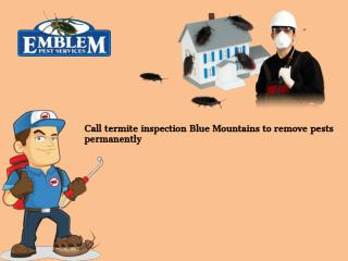 Pest Control Blue Mountains| Termite Inspection Blue Mountains