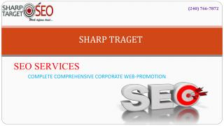 Online SharpTarget Consulting Services