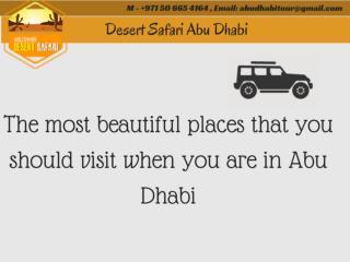 Safari Tour in Abu Dhabi  | Desert Safari Abu Dhabi