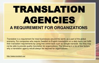 Which factors should a professional translator keep in mind?
