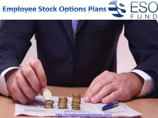 Employee Stock Options Plans | ESO Fund