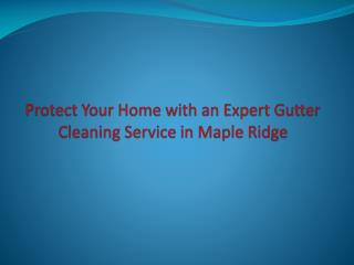 Protect Your Home with an Expert Gutter Cleaning Service in Maple Ridge