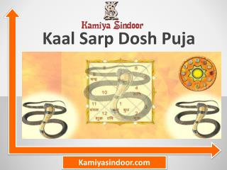Kaal Sarp Dosh Puja & Book Kaal Sarp Dosh removal puja
