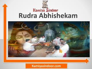 Rudra Abhishek And Shivling Abhishek & Shivling Aarti