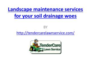 Landscape maintenance services for your soil drainage woes