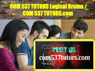 COM537TUTORS Logical Brains / com537tutors.com