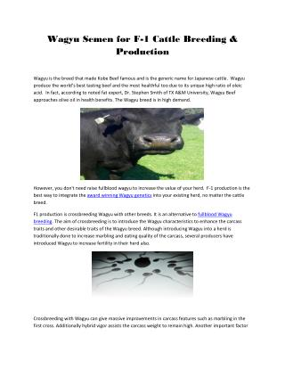 Wagyu Semen for F-1 Cattle Breeding & Production