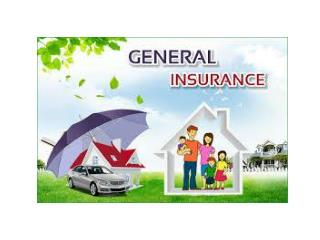 Future of General Insurance Industry