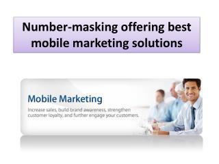 Number-masking Offering Best Mobile Marketing Solutions