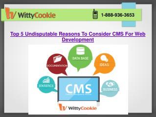 Top 5 Undisputable Reasons To Consider CMS Website Development Services