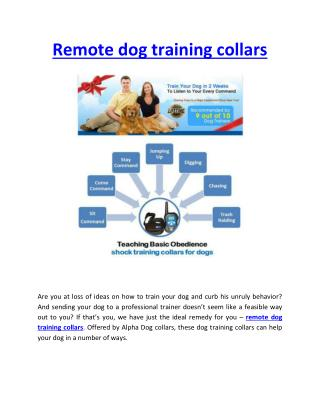 Remote Dog Training Collars