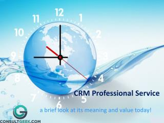 CRM Professional services
