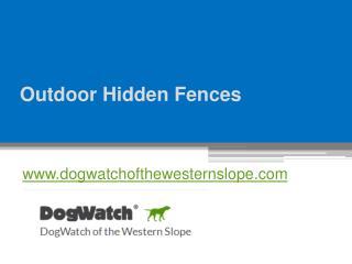 Outdoor Hidden Fences - www.dogwatchofthewesternslope.com