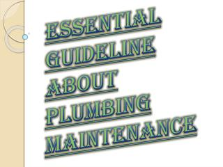High Priority or Professional Plumbing for your Maintenance