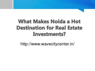 What Makes Noida a Hot Destination for Real Estate Investments?