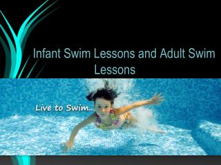 Best Institute of Adult Swim Lessons and Infant Swim Lessons