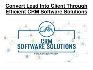 Convert Lead Into Client Through Efficient CRM Software Solutions