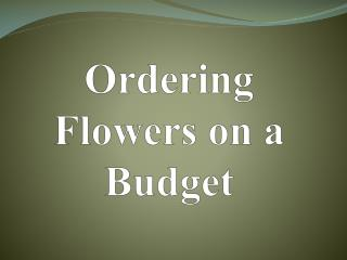 Ordering Flowers on a Budget