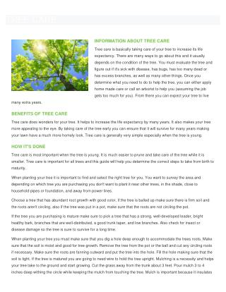 Tree Care and Tree Services