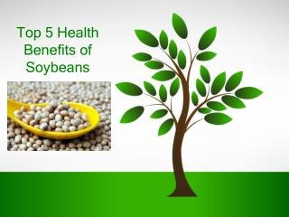 Top 5 Health Benefits of Soybeans