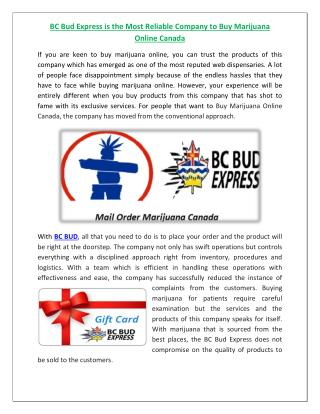 BC Bud Express is the Most Reliable Company to Buy Marijuana Online Canada