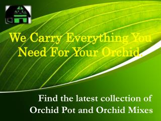 Find the latest collection of Orchid Pot and Orchid Mixes Online