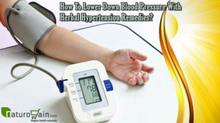 How To Lower Down Blood Pressure With Herbal Hypertension Remedies?